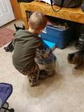 David feeding cats